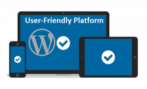 User-friendly platform